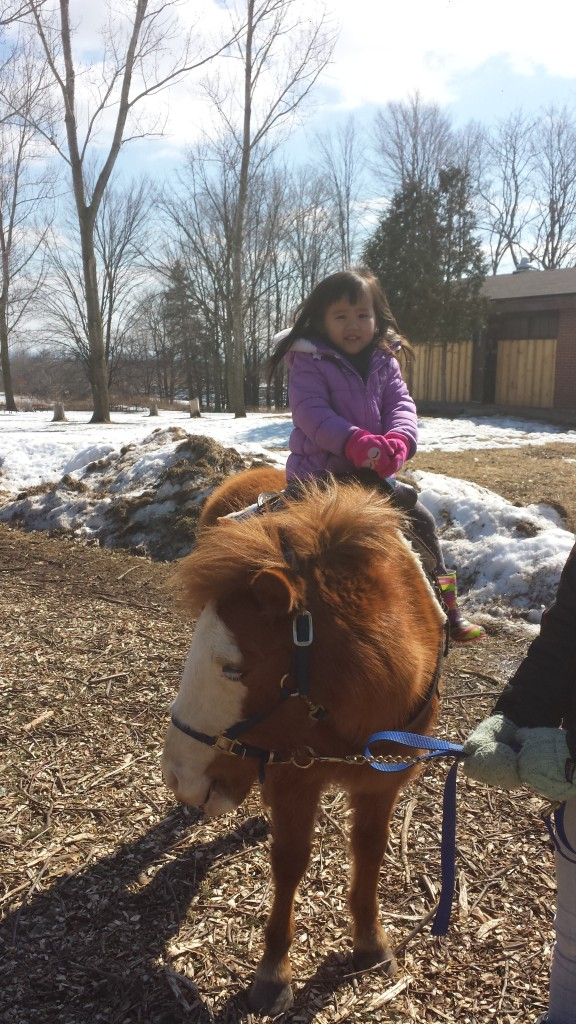 Aly's first pony ride